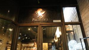 Pacamara2